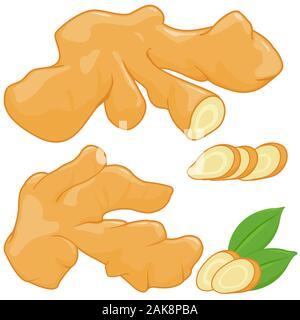 Ensemble et les tranches de gingembre frais sur fond blanc. Banque D'Images