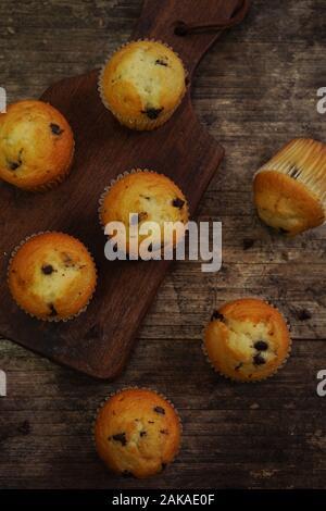 Mini muffins aux pépites de chocolat close up, selective focus Banque D'Images