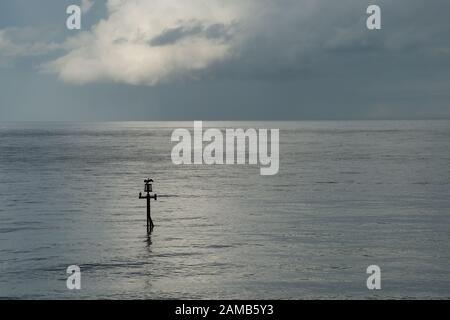 Scène minimaliste de l'horizon marin et nuage avec cormorant avec ailes étirées sur le marqueur de canal dans la lumière agréable Banque D'Images