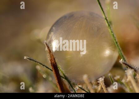 Arrière-plan avec une bulle romantique de savon gelé dans la lumière vive du soleil, sur laquelle les rayons de lumière sont reflétés avec l'espace pour le texte