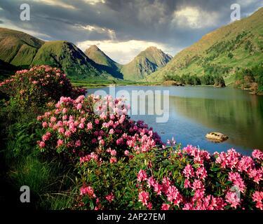 GB - Ecosse: Glen Etive dans les Highlands