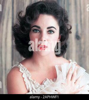 Elizabeth TAYLOR (1932-2011) actrice de cinéma anglo-américaine vers 1960