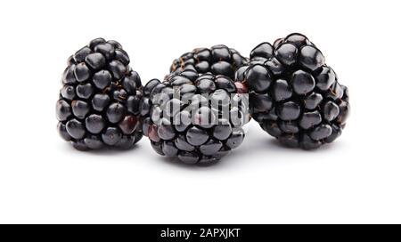 Blackberry Isolé Sur Fond Blanc
