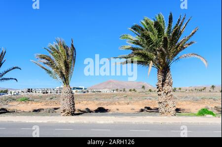 Paysages bruns à Costa Teguise, Lanzarote, foyer sélectif Banque D'Images