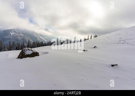 Paysage d'hiver dans les montagnes. Glade De Rusinowa. Tatry. Banque D'Images
