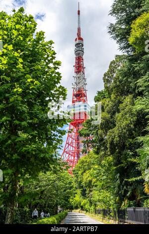 Vue panoramique sur la Tour de Tokyo entre les arbres en été. Tokyo, Japon, Août 2019 Banque D'Images