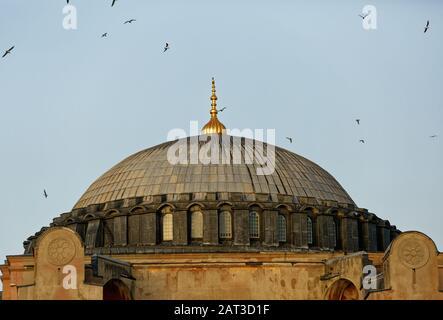 Dôme du musée Sainte-Sophie de Sultanahmet à Istanbul / Turquie. Structure construite en tant qu'Eglise et utilisée plus tard comme Mosquée et aujourd'hui en phase de restauration. Banque D'Images
