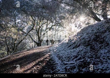 Trois hommes Marchent le long du sentier, la Réserve régionale de Morgan Territory, Californie, États-Unis Banque D'Images