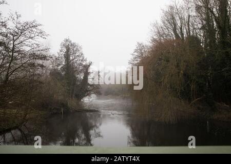 Denham, Royaume-Uni. 5 Février 2020. Le brouillard du matin se trouve sur la rivière Colne à Denham Ford dans le parc national de Denham. Les travaux prévus en conjonction avec la liaison ferroviaire à grande vitesse du   devraient inclure un pont Bailey traversant juste au-delà de l'ancien arbre d'aulne sur la gauche et l'arbre de saules sur la droite et un composé dans la forêt ancienne à droite qui fait partie d'une réserve naturelle. Les militants de l'environnement occupent des arbres à proximité pour tenter d'empêcher le travail. Crédit: Mark Kerrison/Alay Live News
