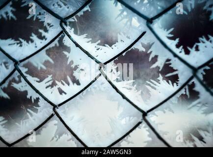 Les fleurs sur le verre glacé. Les fleurs gelées sont sur la fenêtre. Il y a grille de fenêtre.