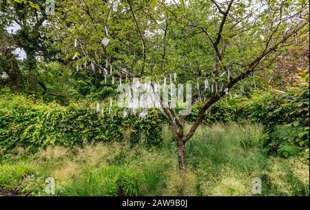 France, Loir et Cher, Vallée de la Loire classée au patrimoine mondial par l'UNESCO, Chaumont sur Loire, domaine de Chaumont sur Loire, Festival International du jardin