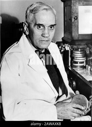 1943 , LONDRES , GRANDE-BRETAGNE : le médecin écossais Sir Alexander FLEMING ( 1881 - 1955 ) de l'Université de Londres et de l'hôpital St. Mary's à Londres , NOB Banque D'Images