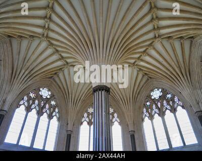 Le plafond voûté orné de la Maison du Chapitre à la cathédrale de Wells, Somerset, Royaume-Uni. Banque D'Images