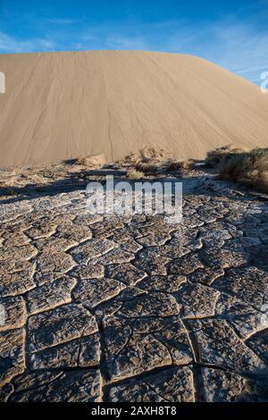 Dunes de sable plat Mesquite, dunes, Parc National de la Vallée de la mort, Californie, États-Unis. Anciennes marques de boue séchée Banque D'Images