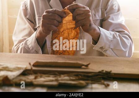 fabrication de cigares à la main, cuba Banque D'Images