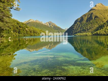 Lac Gunn, Parc National De Fiordland, Southland, Île Du Sud, Nouvelle-Zélande, Océanie Banque D'Images
