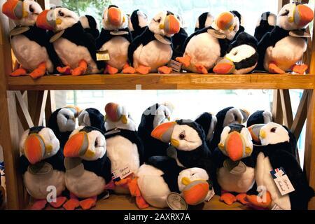Bird, Puffin, Stuffed Animals, Landmark, Coloré, Ville, Islande, Reykjavik Banque D'Images