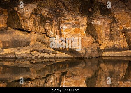 Inde, Rajasthan, Ranthambhore, Parc National, zone 1, le jeune crocodile du Mugger au soleil