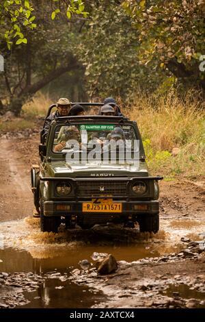 Inde, Rajasthan, Ranthambhore, Parc National, zone 2, Maruti Suzuki Gsigany jeep transportant de riches touristes indiens en après-midi safari à travers le Mestre