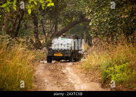Inde, Rajasthan, Ranthambhore, Parc National, zone 2, la jeep de la Tsigane Maruti Suzuki lors du safari l'après-midi à travers le ruisseau