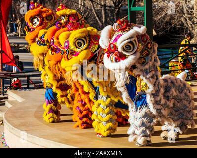 Spectacle de vacances du nouvel an en Asie à Salida; Colorado; par Colorado Asian Cultural Heritage Centre de Denver; Colorado; États-Unis Banque D'Images
