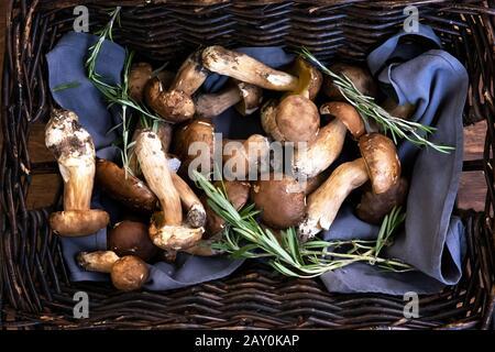 Gros plan de champignons fraîchement cueillis dans un panier, en Bulgarie Banque D'Images