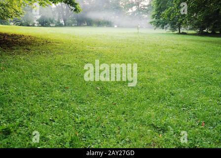 Réglage bas soleil dans Green Park long Casting Shadows Banque D'Images