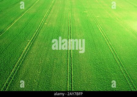 Perspective vue aérienne du paysage des champs agricoles verts frais. Vue de dessus vers le bas, le tracteur suit des lignes géométriques parfaites. Banque D'Images