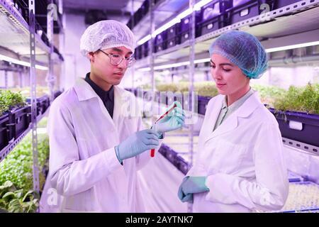Taille vers le haut portrait de deux scientifiques tenant tube de verre avec liquide rouge tout en travaillant dans l'serre agricole, espace de copie