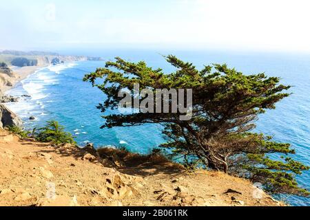Vue le long de l'autoroute 1 sur la côte de Big sur entre Carmel Highlands et Big sur, Comté de Monterey, Californie États-Unis Banque D'Images