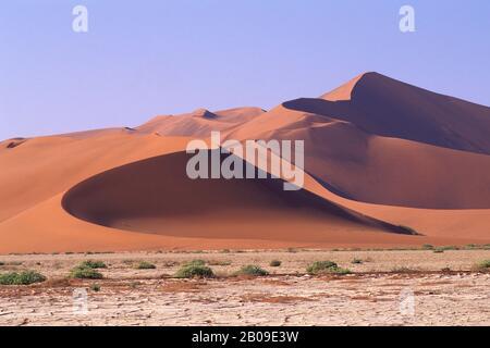 NAMIBIE, NAMIB-NAUKLUFT PARK, SOSSUSVLEI, DUNE DE SABLE « BIG DADDY », PLUS GRANDE DUNE DU MONDE