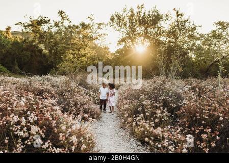 Vue sur le paysage de frère et de sœur tenant les mains et courant à l'extérieur