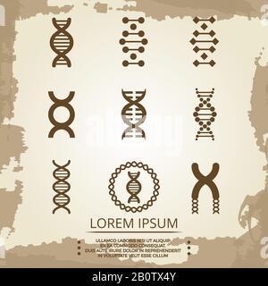 Icônes de vecteur d'ADN - affiche de biologie vintage avec spirales d'ADN. Illustration de la biochimie de la recherche et de l'analyse Banque D'Images