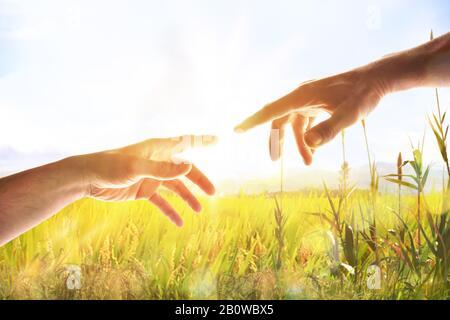 Mains avec paumes en haut dans le champ avec des étincelles et rayon de lumière. Représentation du concept chrétien de la création de l'homme sur terre repos horizontal Banque D'Images