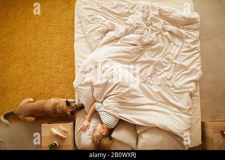 Vue à grand angle de la jeune femme dormant au lit avec chien allongé près d'elle et attendant son aking dans la chambre
