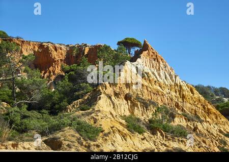 Praia da Falésia (Praia das Belharucas Barranco), Vilamoura, Quarteira, Faro, Algarve, Portugal