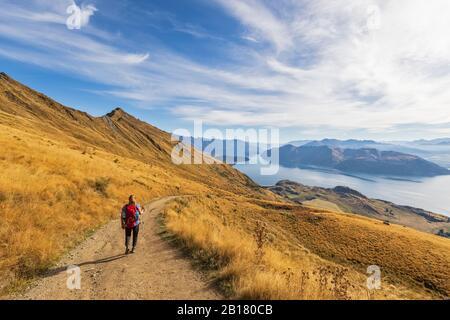 Femme randonnée à Roys Peak, lac Wanaka, Nouvelle-Zélande Banque D'Images