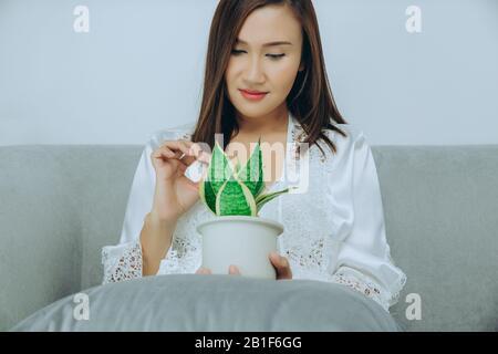 Les femmes asiatiques portent une robe de nuit blanche et un peignoir en satin à manches longues avec dentelle fleurie tiennent des usines de purification de l'air assis sur le canapé gris dans la chambre à nig Banque D'Images