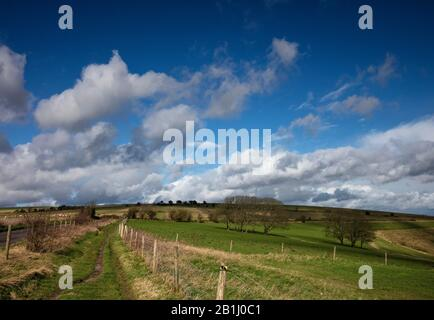 Big Blue Skies et White Fluffy Clouds et une vue Incroyable au Steyning Bowl en février sur le South Downs National Park West Sussex Banque D'Images