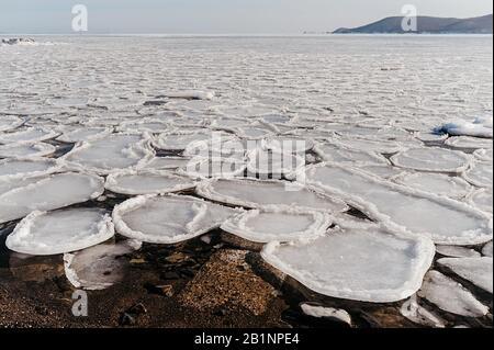 mer froide, recouverte de petites icules rondes inhabituelles, fonte de glace sur la mer, le bord tranchant de la glace est bordé par l'eau qui coule Banque D'Images