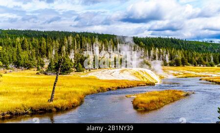 De la vapeur provenant du Geyser Riverside sur la rivière Firehole dans le bassin du Geyser supérieur le long de la route Continental Divide dans le parc national de Yellowstone