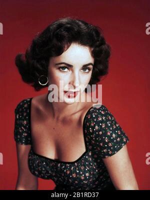 Elizabeth TAYLOR (1932-2011) actrice de film anglo-américaine vers 1955