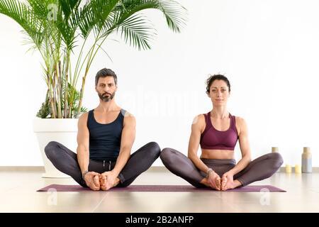 Portrait avant d'un homme et d'une femme pendant l'exercice de méditation de yoga duo à l'intérieur, assis sur le tapis à l'intérieur contre le mur blanc et la plante de palmiers verte et regarder Banque D'Images