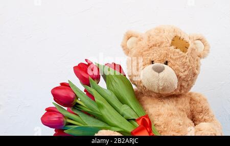 Joli ours en peluche marron avec paw, bouquet de tulipes rouges, toile de fond festive pour l'anniversaire, Saint-Valentin, anniversaire. Banque D'Images