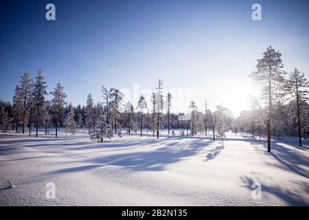Hiver En Laponie Finlande