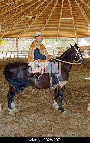 Cheval de cowboy chilien; Huaso; portrait, portant des vêtements traditionnels, chupella, poncho, chamanto, espuelas, spars, estribos, étriers en bois, lac