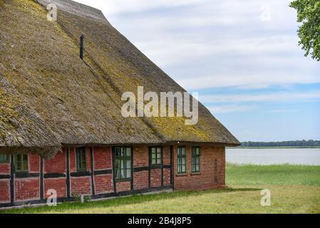Fait partie d'une maison traditionnelle de pêcheurs de chaume au Saaler Bodden sur la péninsule Fischland - Darss près de Wustrow Banque D'Images