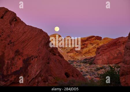 États-Unis, États-Unis D'Amérique, Nevada, Valley Of Fire, National Park, Sierra Nevada, Californie