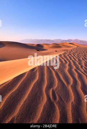 États-Unis, États-Unis D'Amérique, Nevada, Parc National De Death Valley, Mesquite Sand Dunes, Sierra Nevada, Californie
