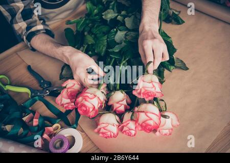 Un haut court au-dessus de la vue en grand angle photo des mains tenir le toucher botany environnement assortiment amke surprise représentant de petite entreprise rosebud porter